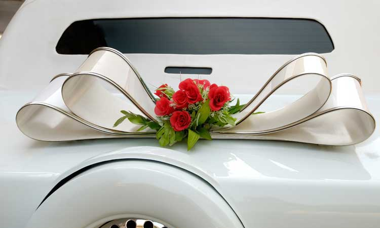 Houston Bus Services Proms & Homecoming Services